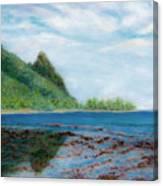 Reef Walk Canvas Print