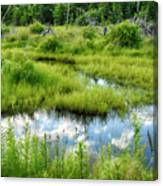 Reflected Clouds In Grass Canvas Print