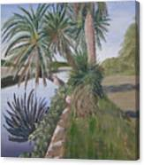 Reflected Palms Canvas Print