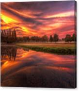 Reflected Reality Canvas Print