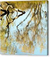 Reflecting A Former Life Canvas Print