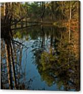 Reflecting Pond Canvas Print