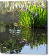 Reflecting Pond Canvas Print