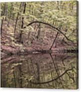 Ridge Run Reflection Canvas Print