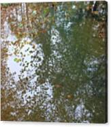 Reflection In Stream Canvas Print