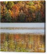 Reflection Of Autumn Colors In A Lake Canvas Print