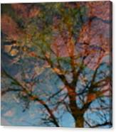 Reflection Of Self Canvas Print