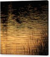 Reflection On A Sunset Canvas Print