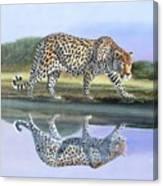 Reflection Stalk Canvas Print