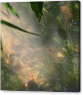 Reflections 3 Canvas Print