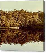 Reflections From Cockle Creek  Canvas Print
