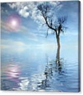 Reflection's Canvas Print