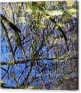 Reflections In A Pond Canvas Print