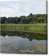Reflections In The Marsh Canvas Print
