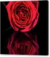Reflections Of A Red Rose Canvas Print