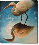 Reflections Of Creation Canvas Print