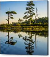 Reflections Of Dawn Canvas Print