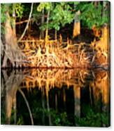 Reflections Of Our Roots Canvas Print