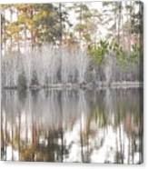 Reflections Of The South Canvas Print