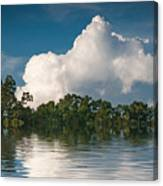 Reflections Of Trees And Clouds Canvas Print