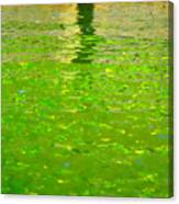 Reflections On Cambridge Canvas Print