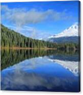 Reflections On Trillium Canvas Print