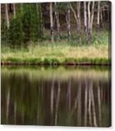 reflections RIV M 2 Canvas Print
