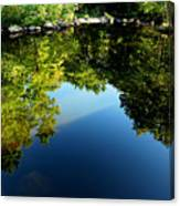 Reflections Trees Canvas Print