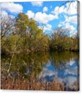 Reflective Cloudy Palatine, Il,  Library Pond Canvas Print