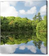 Reflecton On Tranquility Canvas Print