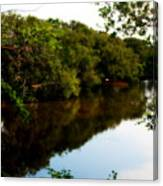 Reflects Canvas Print