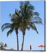 Regal Palms Canvas Print
