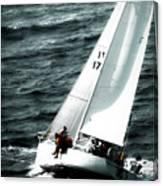 Regatta Sailboat Races Canvas Print