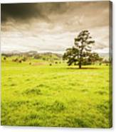 Regional Rural Land Canvas Print