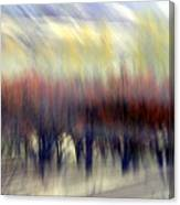 Regularity Canvas Print