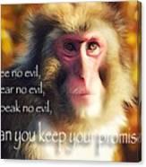 Regulation Of A Monkey Canvas Print