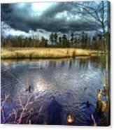 Reifel In Winter 5 Canvas Print
