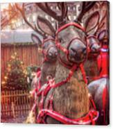 Reindeer At Copenhagen Christmas Market Canvas Print