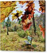 Relax And Watch The Leaves Turn Canvas Print