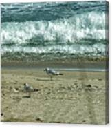 Relaxing By The Ocean Canvas Print