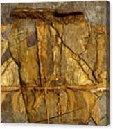 Relict Canvas Print