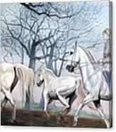 Remembering Days Of Grandeur Canvas Print