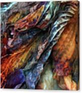 Remnants Canvas Print