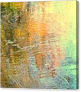 Removing All Illusions Canvas Print