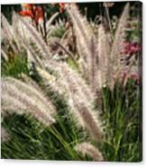 Reptile Garden Plantsi Canvas Print