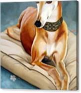 Rescued Greyhound Canvas Print