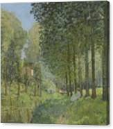 Rest Along The Stream - Edge Of The Wood Canvas Print