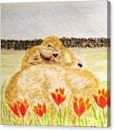 Resting In The Tulips Canvas Print