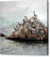 Resting Place - Corona Del Mar Ca Canvas Print