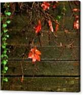 Retaining Wall In Autumn Canvas Print